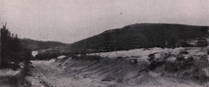 Gilson (1914, fig. 057)