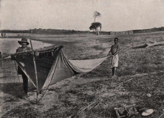 Gilson (1914, fig. 082)