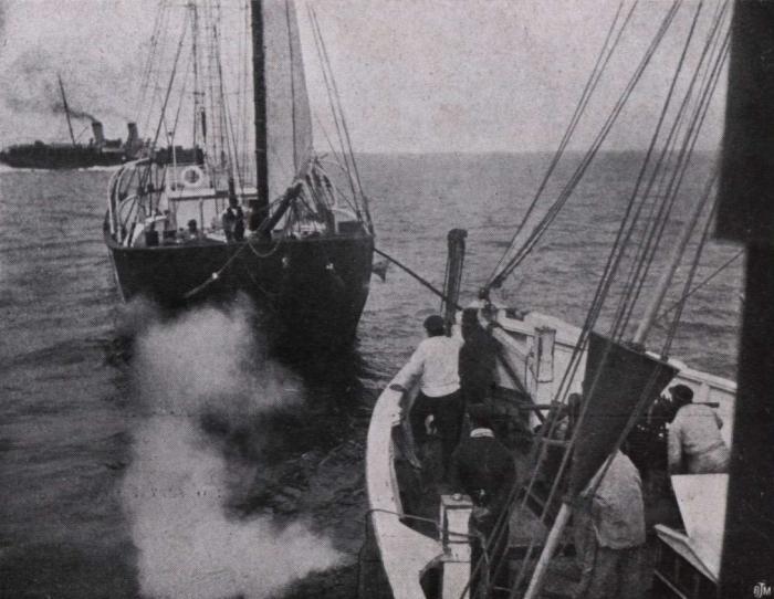 Gilson (1914, fig. 127)