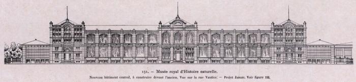 Gilson (1914, fig. 131)