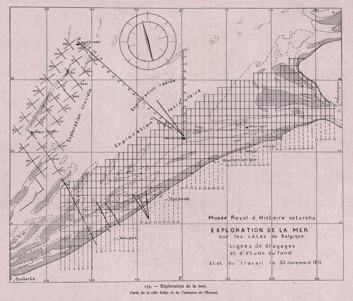 Gilson (1914, fig. 133)