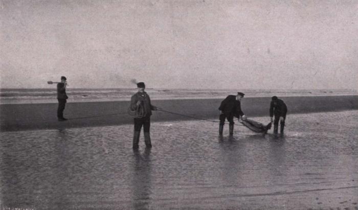 Gilson (1914, fig. 136)