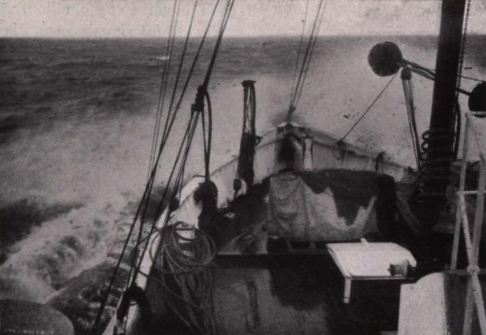 Gilson (1914, fig. 141)