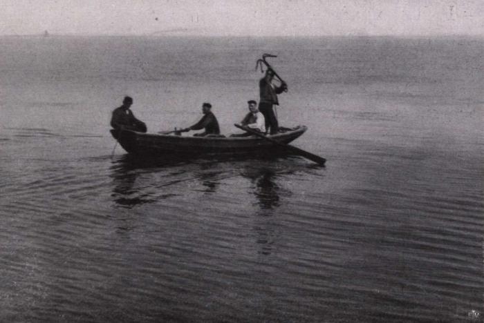 Gilson (1914, fig. 143)