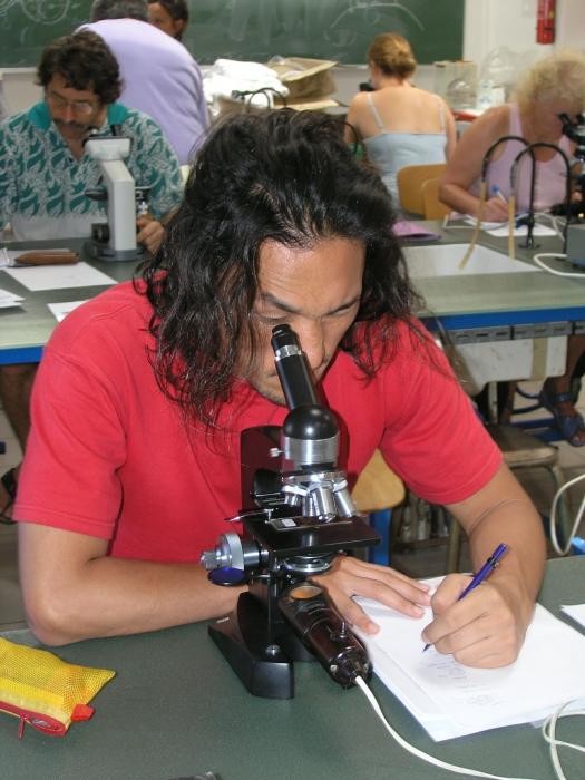 Picture of Porifera training course 13