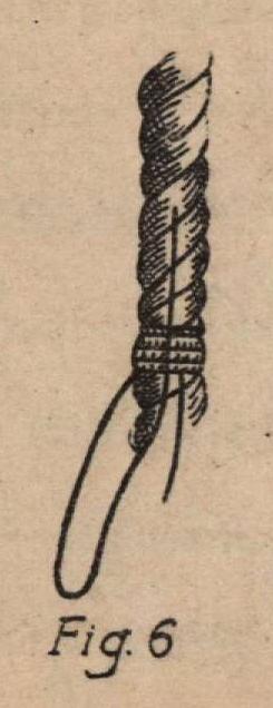 De Jonghe (1912, fig. 06)