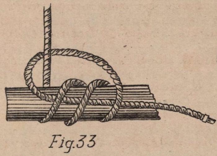 De Jonghe (1912, fig. 33)