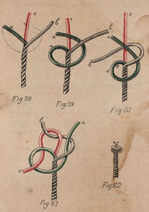De Jonghe (1912, fig. 58-62)
