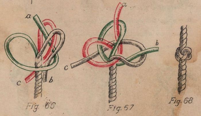 De Jonghe (1912, fig. 66-68)
