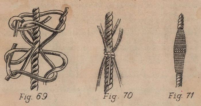 De Jonghe (1912, fig. 69-71)