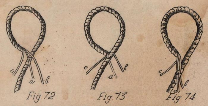 De Jonghe (1912, fig. 72-74)