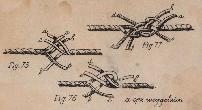 De Jonghe (1912, fig. 75-77)