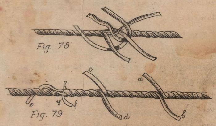 De Jonghe (1912, fig. 78-79)