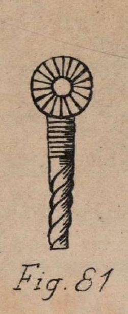De Jonghe (1912, fig. 81)