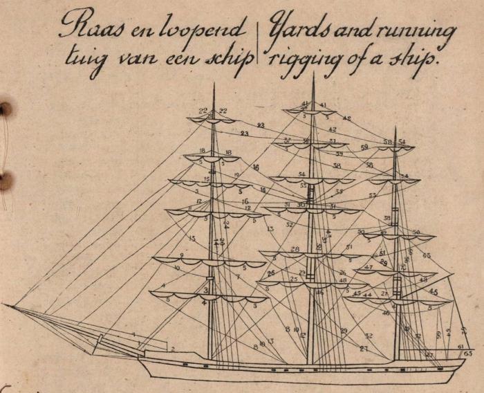 De Jonghe (1912, fig. F)