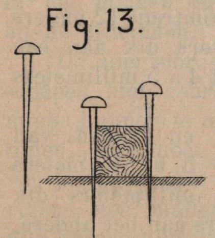 De Borger (1901, fig. 13)