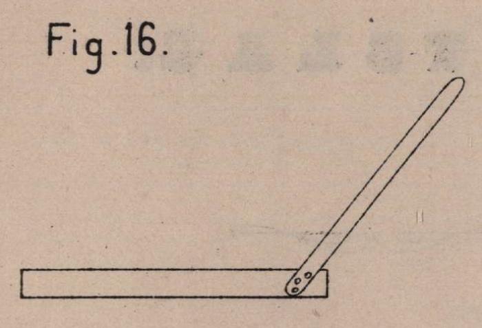 De Borger (1901, fig. 16)