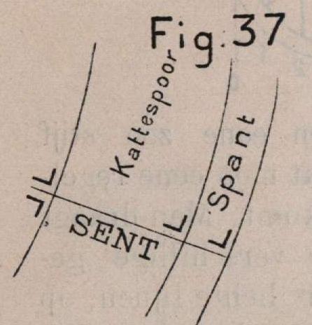 De Borger (1901, fig. 37)