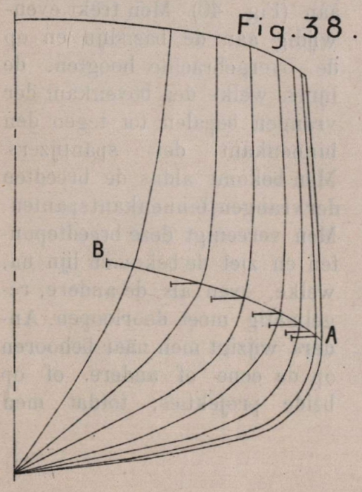 De Borger (1901, fig. 38)