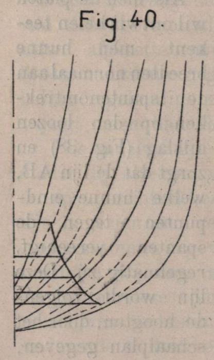 De Borger (1901, fig. 40)
