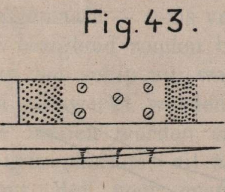 De Borger (1901, fig. 43)
