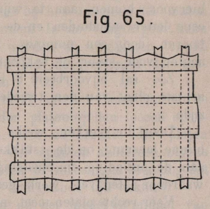 De Borger (1901, fig. 65)
