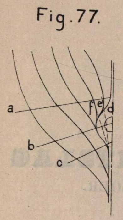 De Borger (1901, fig. 77)