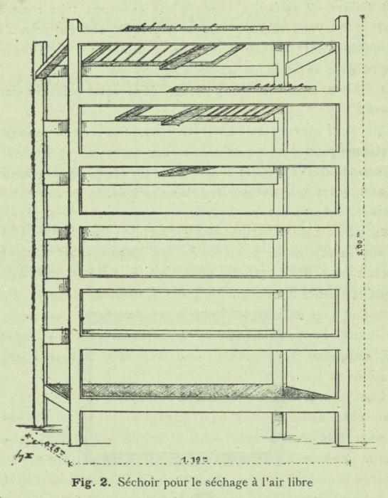 Henseval (1903, fig. 2)