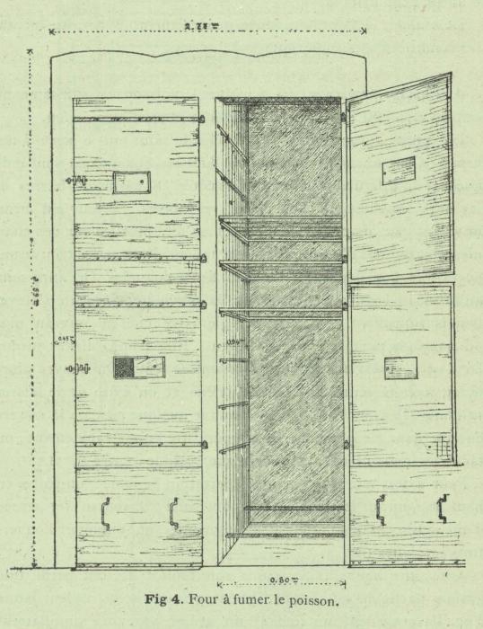 Henseval (1903, fig. 4)