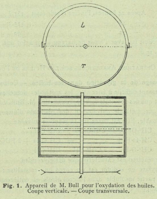 Henseval (1903, fig. 1)