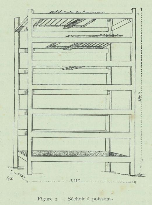 Huwart (1911, fig. 2)