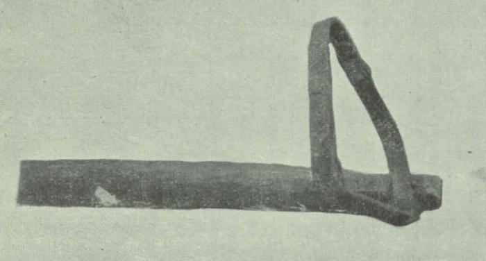 Gilson (1911, fig. 07)