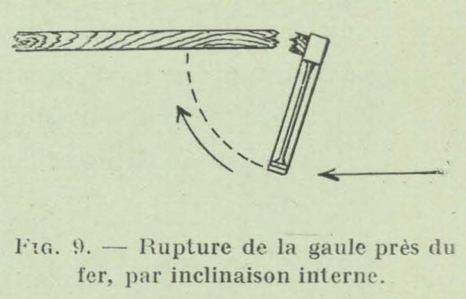 Gilson (1911, fig. 09)