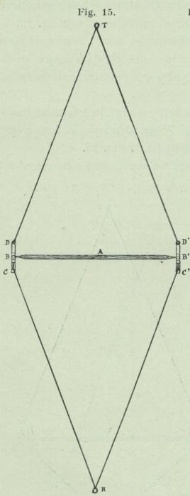 Gilson (1911, fig. 15)