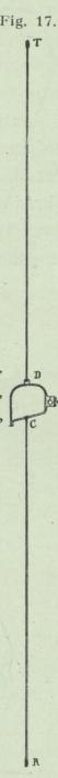 Gilson (1911, fig. 17)
