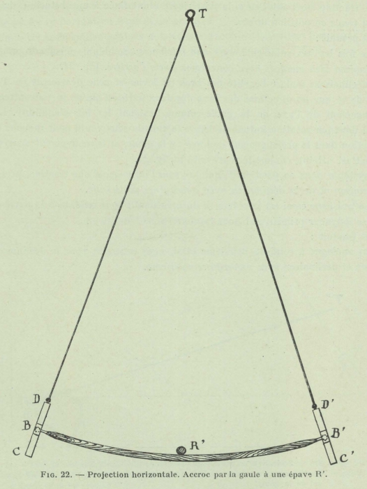 Gilson (1911, fig. 22)