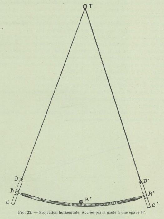 Gilson (1911, fig. 22)