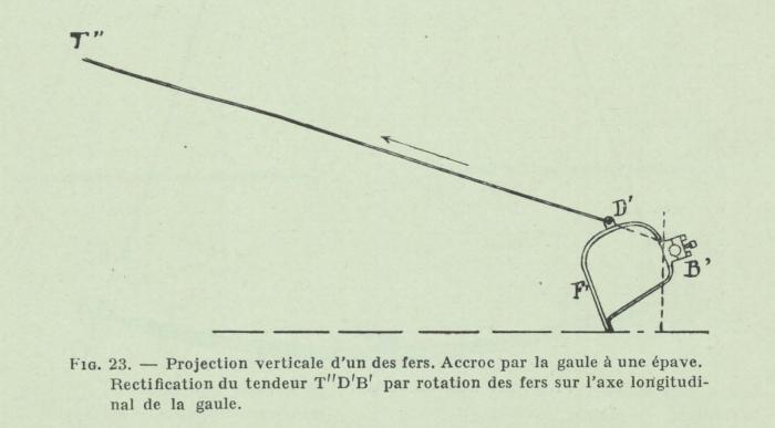 Gilson (1911, fig. 23)