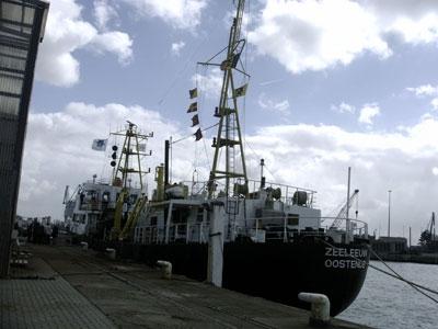 De Zeeleeuw
