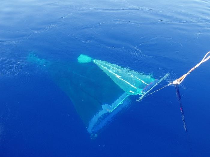 RMT1+8 plankton net under water