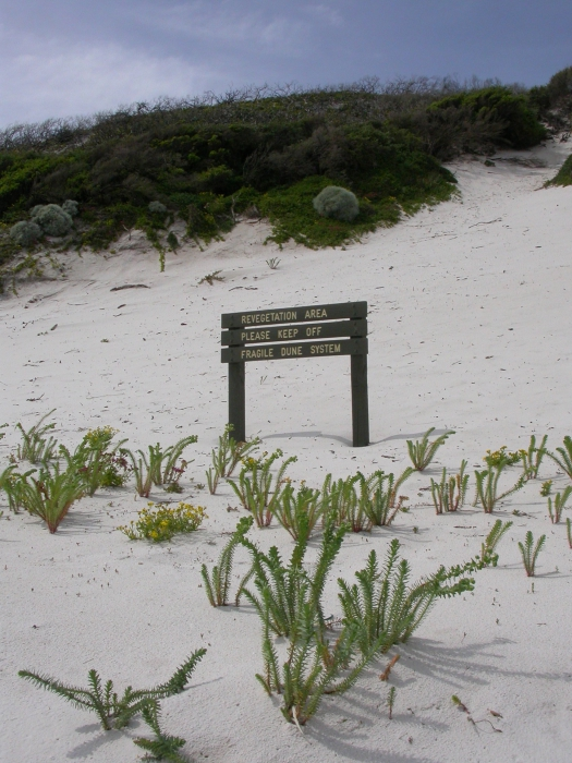 Duinen Wilsons Promontory
