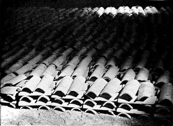 Graf (1957, foto 03)