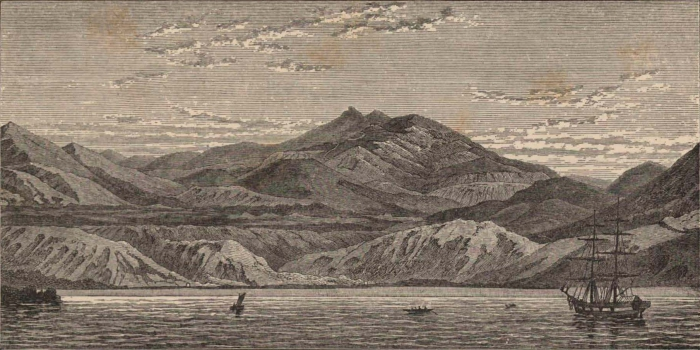 Renard (1888, pl. 04)
