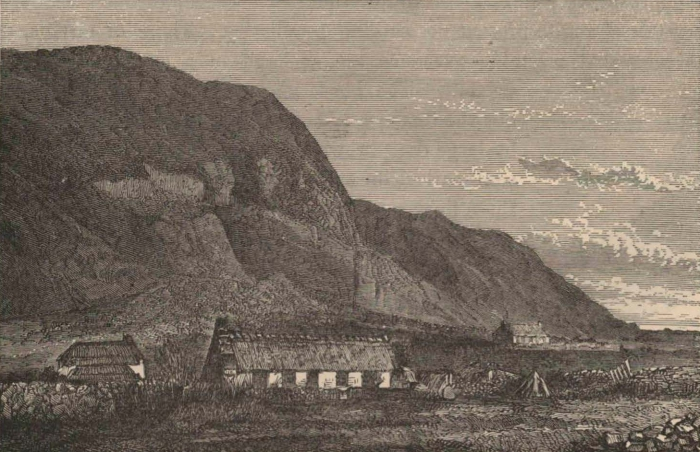 Renard (1888, pl. 06)