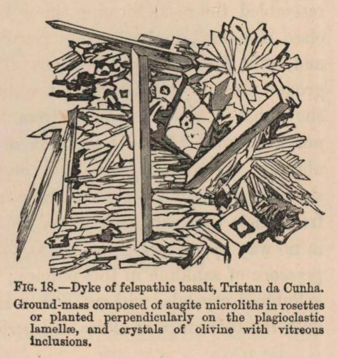 Renard (1888, fig. 18)