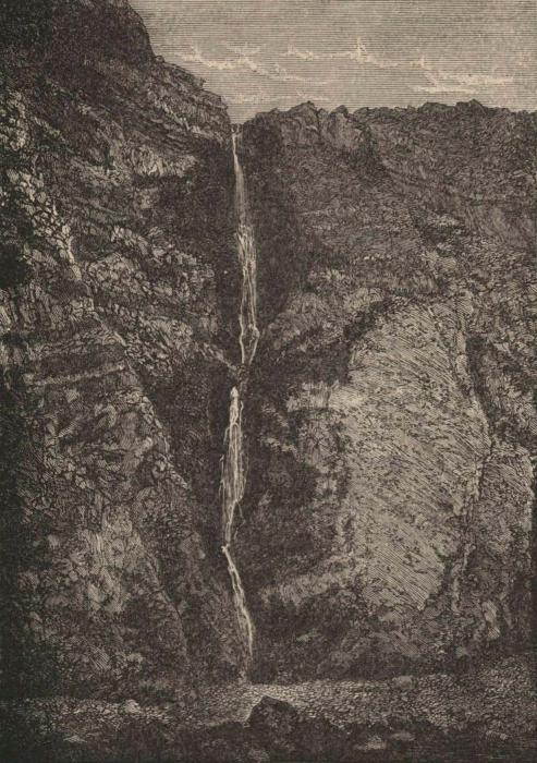 Renard (1888, pl. 07)