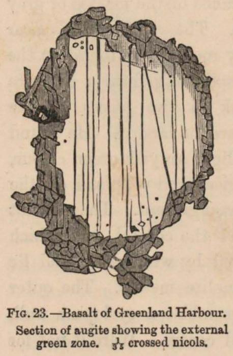 Renard (1888, fig. 23)
