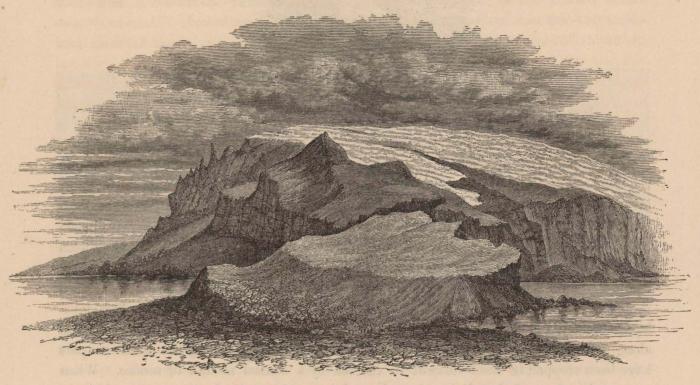 Renard (1888, pl. 13)