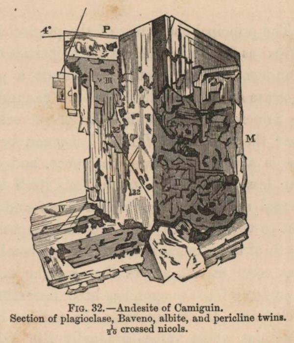 Renard (1888, fig. 32)