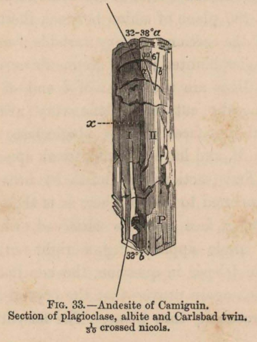 Renard (1888, fig. 33)